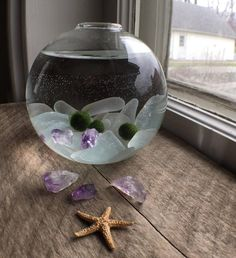 Enjoy a piece of nature in your home or office with this cute little marimo ball aquarium. Along with your marimo you will receive genuine sea glass and amethyst to admire. The glass orb is about 3 x 3 and the moss balls are all about in size. Indoor Water Garden, Indoor Plants, Marimo Moss Ball Terrarium, Fish Tank Terrarium, Water Terrarium, Betta Fish Tank, Fish Tanks, Idee Diy, Water Plants