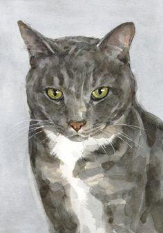 Gray cat watercolor