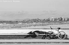 Relax sul molo di #Cesenatico by @mfrancesco81