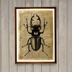 Stag beetle print on a handmade antique dictionary page. 8.3 x 11.7 inches (A4) rustic decor. Insect print for home and office. BUY 1 GET 1 FREE -