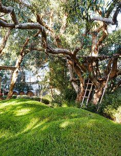 Peter Shaw · Sunnymeade — The Design Files Landscape Plans, Landscape Design, Amazing Gardens, Beautiful Gardens, Beautiful Interiors, Ikea Garden Furniture, Coastal Furniture, English Garden Design, Australian Native Garden