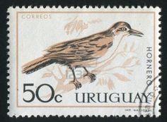 URUGUAY - CIRCA 1970: stamp printed by Uruguay, shows