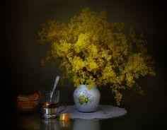 Marmalade by Elena Pankova on 500px