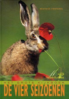 Kijkboek waarin een algemene indruk wordt gegeven van het dieren- en plantenleven in de verschillende seizoenen. Met paginagrote kleurenfoto's.