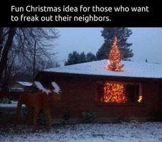Funny pictures about A Giant Christmas Tree. Oh, and cool pics about A Giant Christmas Tree. Also, A Giant Christmas Tree photos. Christmas Neighbor, Christmas Humor, Christmas Pranks, Funny Christmas Memes, Redneck Christmas, Merry Christmas Funny, Funny Christmas Pictures, Christmas Costumes, Creative Christmas Trees