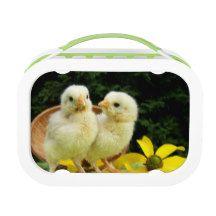 two little fluffy chicken lunch box