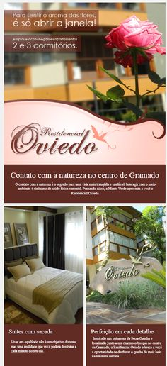 Newsletter Residencial Oviedo