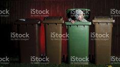 Homme se cacher dans la poubelle. photo libre de droits