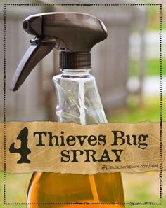 DIY Four Thieves Bug Spray | BulkHerbStore.com/blog | Keep those pesky bugs away this summer naturally with this herbal bug spray!