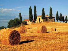 Aujourd'hui on va vous donner mille et une raisons de visiter la Toscane. Pourquoi on a choisi cette région d' Italie? La réponse est tout à fait évidente!!