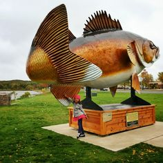 10 Day Minnesotans at the giant walleye in Garrison, MN located on Lake Mille Lacs. Click to see more from world-renowned travelers as they road-trip through Minnesota. #OnlyinMN