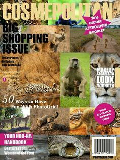 Cute wildlife on cover magazine