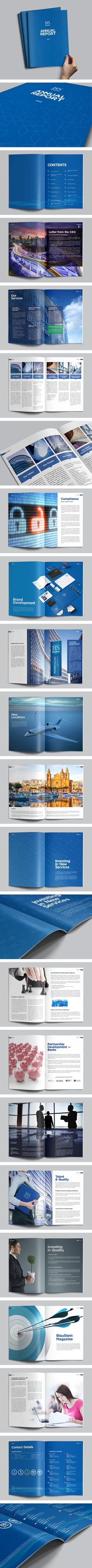 BlauStein Annual Report 2013 by Sergey Vasilev, via Behance