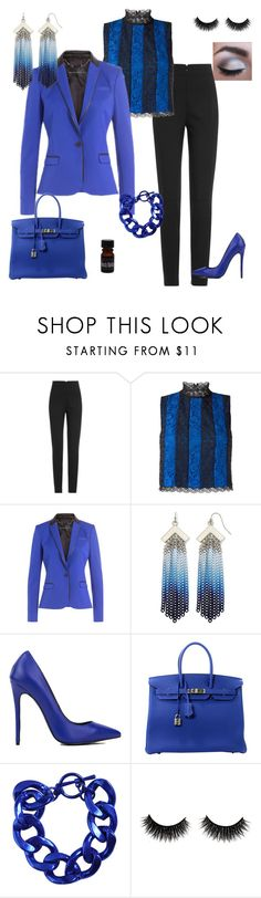 """Corporate Goth Twilight"" by emily-nelson-abentroth ❤ liked on Polyvore featuring Alexander McQueen, Diane Von Furstenberg, Barbara Bui, Nicole By Nicole Miller, Akira Black Label, Hermès, Bardot, WorkWear, gothic and blackandblue"