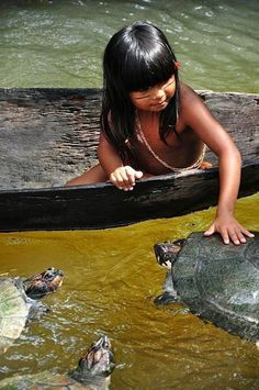 Google+VonVictor Rosenchild This is an absolutely beautiful photo. It is funny how some people want to go to the Amazon to kill all the trees and other plants, dig out all the natural resources and then pave it over with cement.., then later on those same people want to return to nature and begin to advocate for environmental sustainability. Katalinka Katalin originally shared: Amazonas Venezolano