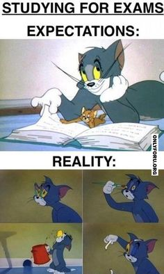 Studying for exams - #OnlyForU, #funny, #lol, #fun, #humor, #rofl, #gif, #troll, #comics, #meme, #gags, #new, #lol images, #lol gifs, #Funny pictures, #Funny gifs, #haha,