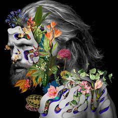 Les Collages colorés de Visages fleuris de Marcelo Monreal (8)