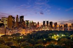 NYC. Central Park at dusk.  Still miss NY. Would love to be there at Christmas! So glad my son got to experience NY...