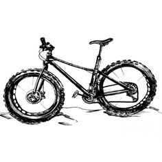 fat tire bike drawing - Google Search