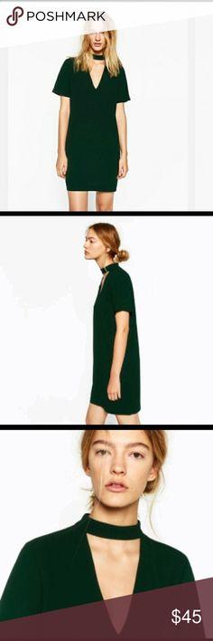 Zara Green Dress w Choker Neck Brand new Zara green dress Zara Dresses Mini