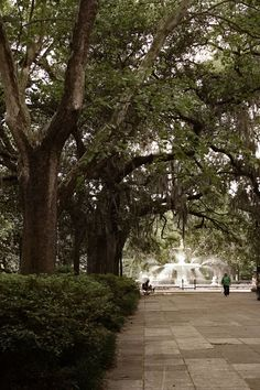 5 things to do in Savannah