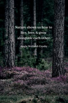 What are the benefits of forest bathing? What is Shinrin-yoku? Soul Quotes, Nature Quotes, Peace Quotes, Art Quotes, Life Quotes, Forest Wallpaper, Nature Wallpaper, Iphone Wallpaper, Benefits Of Forest