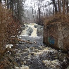 Webhannet Falls, Wells, Maine Early spring when the snow is melting...the falls run full...you drive by this all the time in Wells...but we finally drove down to see up close...April 2015