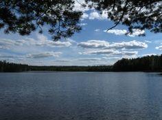 Niemisjärvi, Evo