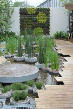 RBC Blue Water Roof Garden Professor Nigel Dunnett & The Landscape Agency for Chelsea Flower Show 2013