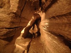 Bonnechere Caves (Eganville) - All You Need to Know BEFORE You Go - Updated 2020 (Eganville, Ontario) - Tripadvisor May Long Weekend, Ontario Travel, Antelope Canyon, Geology, Trip Advisor, Tourism, Caves, Places To Visit, Canada