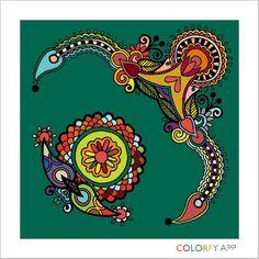 Color fliiii