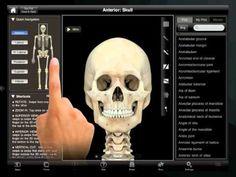 Pre-Med - 5 Useful iPad Apps for Doctors, Patients and Med Students Physician Assistant, Medical Assistant, Pa School, Medical School, Medical Students, Nursing Students, Nursing Schools, Medical News, Medical History