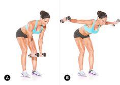 Rear deltoid / shoulder