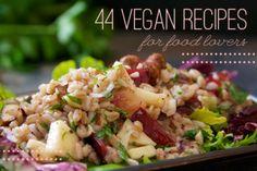 Beautiful website  ~Best Vegan Recipe List — The Tomato Tart