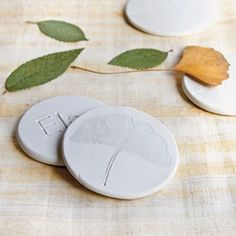 Leaf Tokens! Using polymer clay, waxed paper and leaves! Learn to identify the leaves from the trees