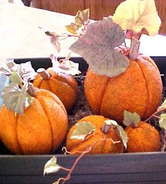 Southern Scraps : Must Do Monday- DIY Pumpkin decor- 5 ways