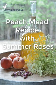 This peach mead recipe is easy to make in small batches as the peaches ripen or the roses bloom. Preserve summer peaches in mead for winter cocktails. Homemade Wine Recipes, Homemade Liquor, Drink Recipes, Homemade Alcohol, Honey Recipes, Vegan Recipes, Vinaigrette, Honey Mead, Mead Wine