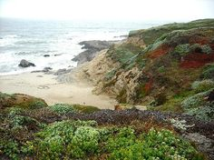 Bodega Bay, California - copyright KellyManningPhotography.com