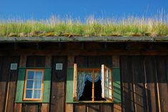 Grass covered roof on cabin near Oppdal, Norway