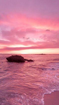 914 best beach wallpaper images in 2018 Strand Wallpaper, Sunset Wallpaper, Cute Wallpaper Backgrounds, Pretty Wallpapers, Pink Wallpaper Iphone, Iphone Backgrounds, Iphone Wallpapers, Summer Wallpapers For Iphone, Iphone Background Pink