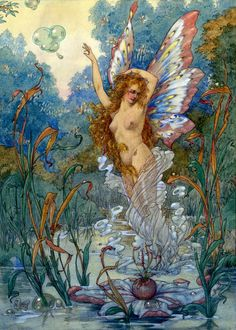 Harold Gaze ~ Water Fairy ~