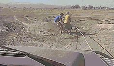 gif. Baby elephant runs to its mother after being rescued from being trapped in a hole in the ground.