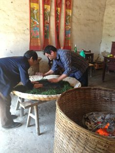 """teaventures: """"Yellow tea drying is a daunting feat of skill, experience, and back breaking work. """""""