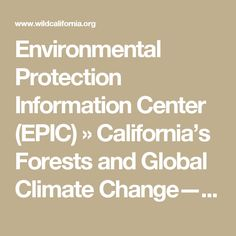 Environmental Protection Information Center (EPIC) » California's Forests and Global Climate Change—Changing the Game