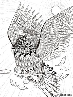 Vector: flying eagle coloring page