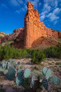 ✯ Caprock Canyon in Texas