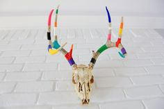 Painted Deer Antlers Skull RAINBOW - I would paint the whole thing white, then do the stripes, the plain skull freaks me out