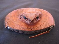 Real Frog Coin Purse Wallet Cane Toad Animal Leather Tanned Taxidermy Weird Gift