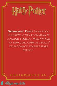 Gry słów, które przepadły w tłumaczeniu z książek o Harrym Potterze - Grimmauld Place #ciekawostki #harrypotter #książka #książki Harry Potter Mems, Harry Potter Facts, Harry Potter Quotes, Harry Potter Fandom, Draco Malfoy, Hermione, Wolfstar, Hogwarts, Ph