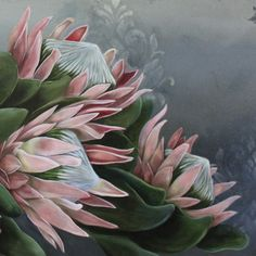 [•PROTEA~LOVE•] Plant Painting, Ceramic Painting, Figure Painting, Protea Art, Protea Flower, Watercolor Flowers, Watercolor Art, Cactus E Suculentas, Abstract Flower Art